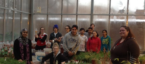 Plant ecology students in the greenhouse 2014
