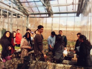 Plant Ecology students in the greenhouse