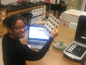 Biology research practicum student, Cheyenne, digitizes selected slides of fieldwork from the 1970s and 1980s.