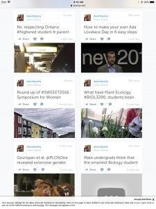 Some of my Storify stories as seen on my now defunct webpage