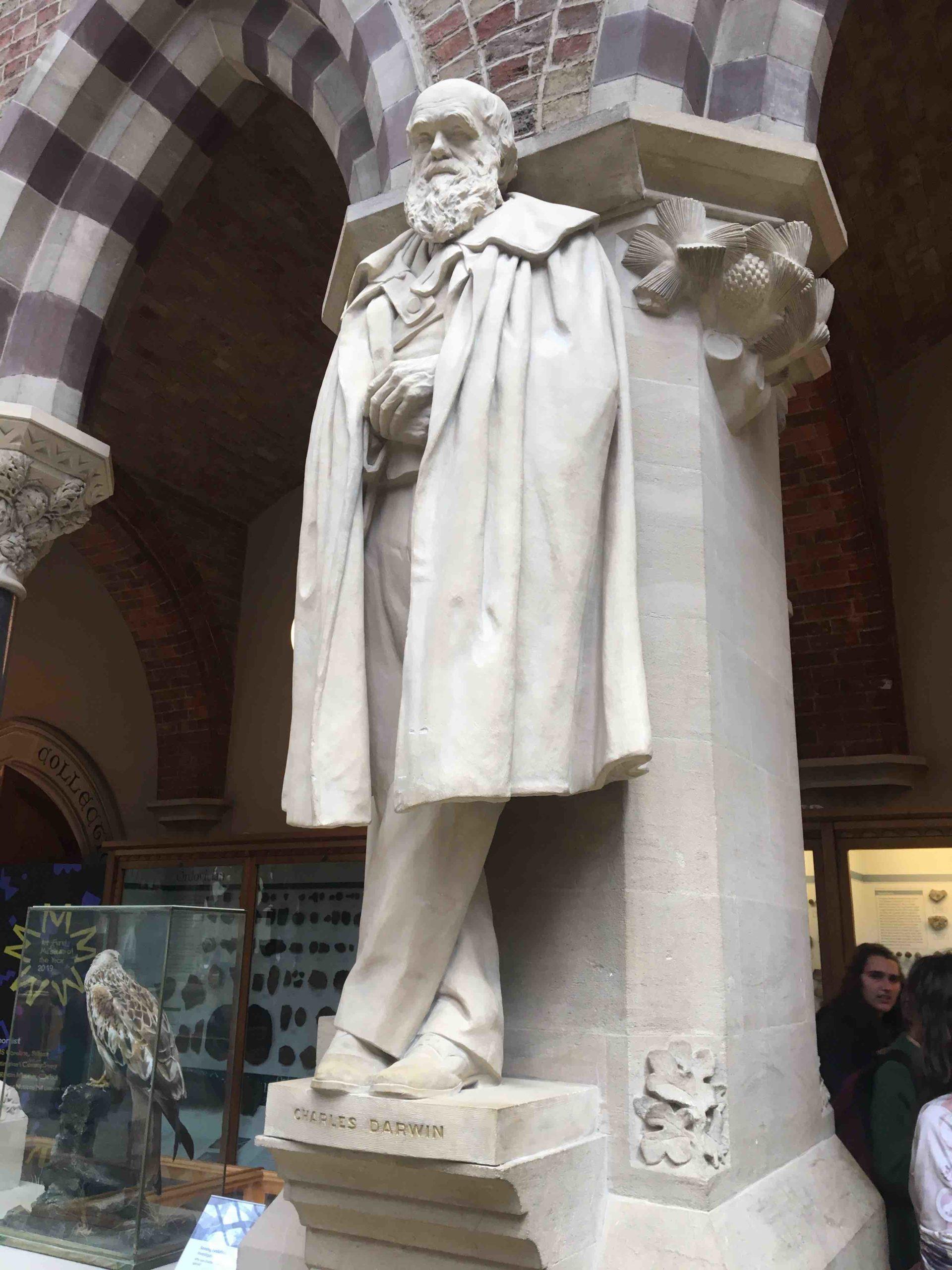 Charles Darwin at the Oxford Natural History Museum