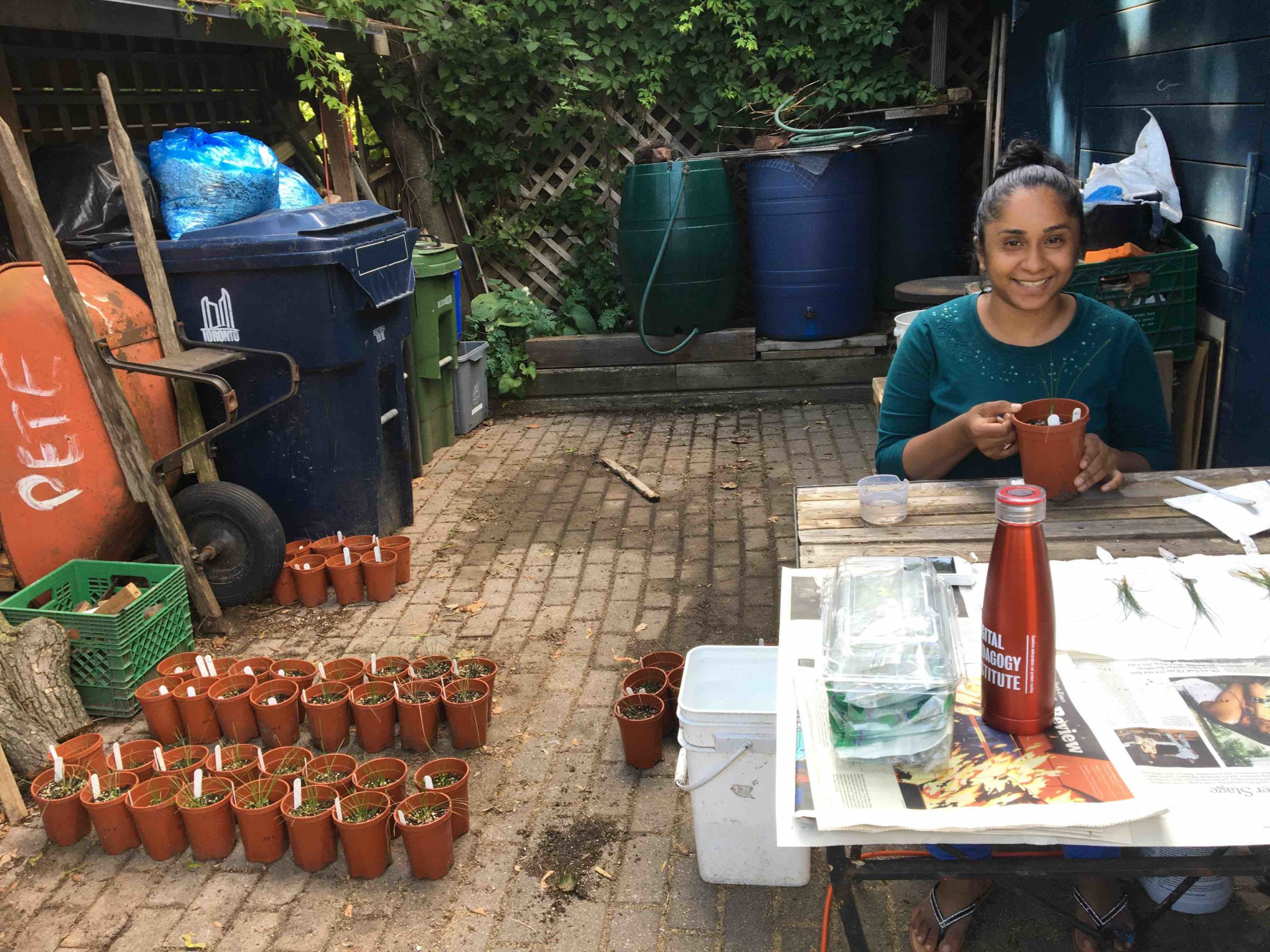 International visiting grad student, Ms. Varsha Boejharat, doing her research in the back garden